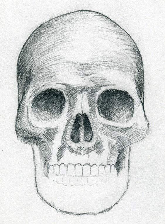 Jak Nakreslit Lebku Graficke Kresleni