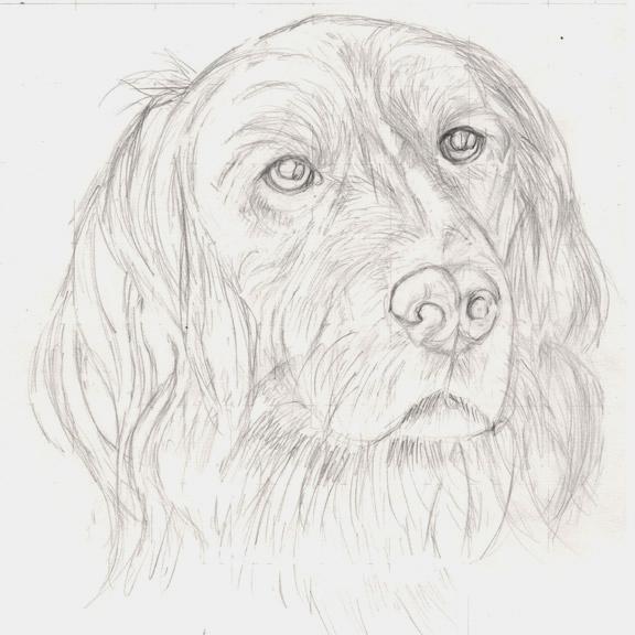 Kresleni Jak Nakreslit Rodinneho Milacka Graficke Kresleni
